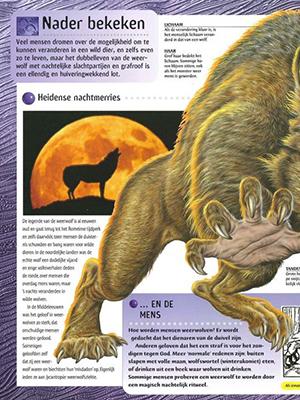 Weerwolf 3
